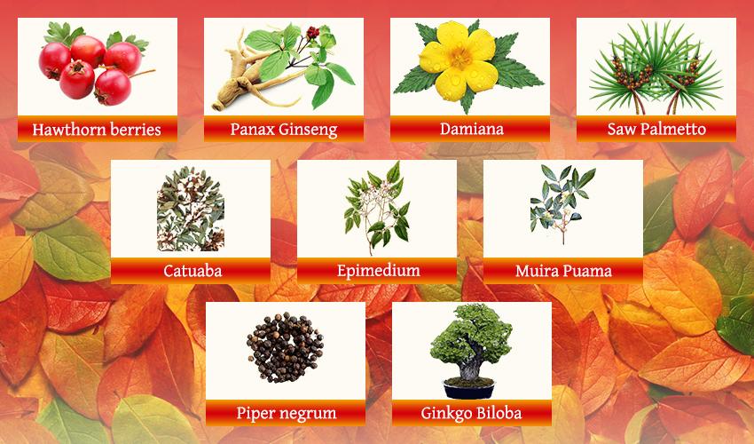 VigRX natural compounds
